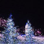 クリスマスは世界による違いが大きい!