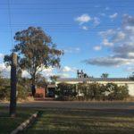 【体験談】オーストラリアのワーホリで木材工場で働いてみて